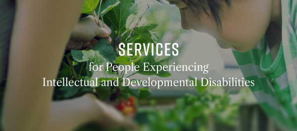 Services for People with Intellectual and Developmental Disabilities